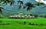 Du lịch - Khu nghỉ dưỡng sinh thái giữa núi rừng Mai Châu