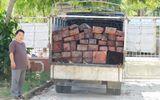 Tài nguyên - Liên tiếp bắt giữ nhiều vụ vận chuyển gỗ sơn huyết trái phép