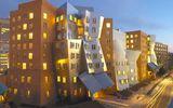 Chuyện học đường - Top 10 trường Đại học hàng đầu thế giới mới nhất