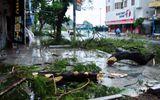 Sự kiện hàng ngày - Quảng Ninh thiệt hại khoảng 20 tỷ đồng do bão số 3