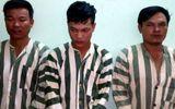Bắt giam 8 người vì đánh chết kẻ nghi trộm chó