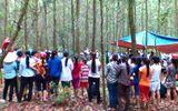 Nghệ An: Nghi vấn vụ học sinh lớp 9 treo cổ trong vườn tràm