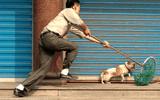Bị cả làng vây đánh vì nghi trộm chó