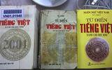 Chuyện học đường - Thu hồi cuốn từ điển tiếng Việt gây sốc