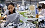 Doanh nghiệp - Hãng may TAL Group rời bỏ thị trường Trung Quốc sang Việt Nam?
