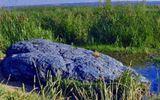 Chuyện lạ - Bí mật tảng đá xanh biếc khiến mọi nhà khoa học đau đầu