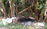 Hành trình truy bắt nghi can giết người tình, đốt xác phi tang