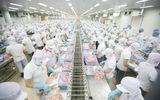 Doanh nghiệp - Thủy sản Việt An: Chủ tịch ra đi, để lại món nợ nghìn tỷ
