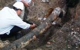 Xã hội - Cơ bản khắc phục sự cố vỡ đường ống hóa chất ở Hải Phòng