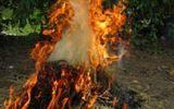 An ninh - Hình sự - Mất gói mì, cha chất rơm châm lửa đốt con
