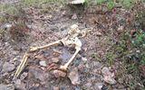 Huế: Phát hiện một bộ xương người trong rừng