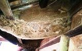 Khám phá - Cận cảnh ngôi nhà cổ thời Nguyễn tại một huyện miền núi Hà Tĩnh
