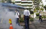 Tin thế giới - Mỹ và Hàn Quốc ban hành cảnh báo đi lại tới Singapore do dịch Zika