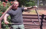 Thấy rắn nâu cực độc đang lột xác, nam thanh niên liều mình tóm gọn