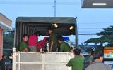Bắt lại 334 học viên trốn trại cai nghiện ở Đồng Nai