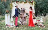 Cặp đôi nhờ gấu làm chứng trong hôn lễ