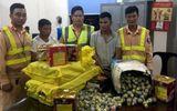 Hà Nội: CSGT phát hiện xe tải chở gần 500 quả pháo hình lựu đạn