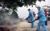 Tăng cường ứng phó dịch bệnh sốt xuất huyết và virus Zika tại TPHCM
