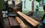 Bắt giữ xe tải chở gỗ lậu được ngụy trang từ những lon phế liệu