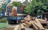 Tạm giữ xe tải chở hơn 20m3 gỗ ghi sai với hồ sơ gốc