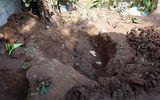 Hà Nội: Nghi án 2 bé gái bị sát hại, chôn xác cạnh nhau trong vườn