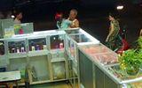 Ông chủ cửa hàng 70 tuổi quật ngã tên cướp iPhone 6