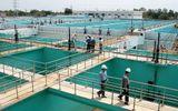 TP HCM đưa vào sử dụng nhà máy nước công suất 300.000m3/ngày