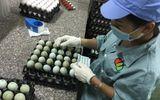 Trứng gà màu xanh được rao bán giàu dinh dưỡng hơn cả nhân sâm?
