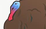 Điểm 10 sự kiện thú vị liên quan đến những chú gà tây dịp lễ Tạ Ơn