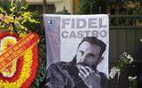 Tổng bí thư Nguyễn Phú Trọng viếng ông Fidel Castro