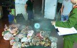 Tiêu hủy 1 tấn nội tạng mốc xanh tại Hà Nội