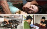 Tin tức pháp luật hôm nay ngày 15/12 - ĐS&PL Online