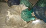 Phát hiện vụ nhập gỗ lậu, 9 cá thể động vật từ Lào về Việt Nam