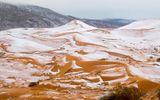 Tuyết rơi trên sa mạc Sahara sau gần 40 năm