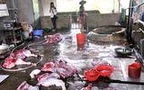 Bắt quả tang cơ sở giết mổ lợn không giấy phép