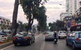 """Xe biển xanh """"phớt lờ"""" quy định để lấn làn đường xe buýt nhanh BRT"""