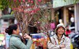 Dự báo thời tiết kỳ nghỉ Tết Nguyên đán tại 3 miền