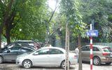 Sau Tết nguyên đán, Hà Nội áp dụng đỗ xe theo ngày chẵn lẻ trên nhiều tuyến phố