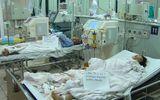 Ngộ độc nấm rừng, cả gia đình thuê trực thăng nhập viện cấp cứu