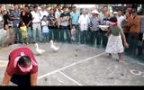 Video-Hot - Cười vỡ bụng với trò chơi dân gian bịt mắt đi bắt vịt