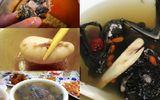 Những món súp bổ dưỡng, đắt tiền nhưng không phải ai cũng dám ăn