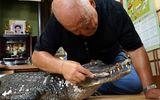 Tình bạn kỳ lạ hơn 30 năm giữa cụ ông 65 tuổi và chú cá sấu dài 2,1m