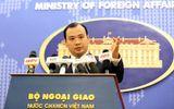 """Việt Nam phản đối """"quy chế nghỉ đánh bắt cá"""" của Trung Quốc ở Biển Đông"""