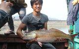 Cá lạ nghi sủ vàng 8kg ở Nghệ An, được trả giá 900 triệu chưa bán