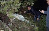 Cứu sống được phi công Syria rơi ở Thổ Nhĩ Kỳ