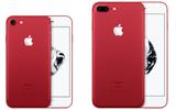 Sản phẩm số - Apple bất ngờ ra mắt iPhone 7 và 7 Plus phiên bản màu đỏ rực, giá không đổi