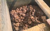 Tin trong nước - Phát hiện bộ xương người khi hút bể phốt xây nhà