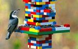 Ăn - Chơi - Chiêm ngưỡng 10 thiết kế cực hay và thông minh từ LEGO