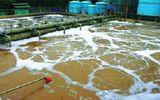 5.200 cơ sở chưa có hệ thống xử lý nước thải y tế đảm bảo
