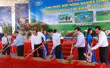 Hội nghị xúc tiến đầu tư  Bình Thuận: Agribank đồng hành cùng địa phương phát triển xanh, sạch, bền vững
